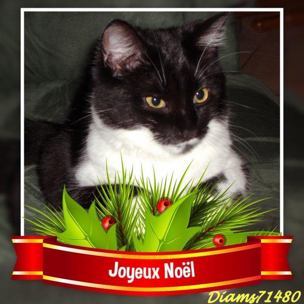 Bonne fête de NOEL!