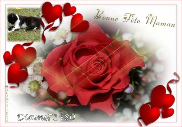 Bonne fête à toutes les Mamans y compris celles qui sont au Paradis! (u)