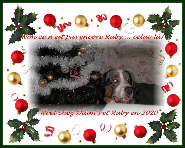 Joyeux Noël à vous tous! RhooOooo! <3