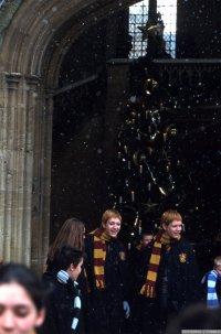 """""""Un énorme sapin avançait dans le couloir en haletant, soufflant, ahanant. Les deux pieds immenses qu'on voyait dépasser trahissaient la présence de Hagrid derrière le sapin."""""""