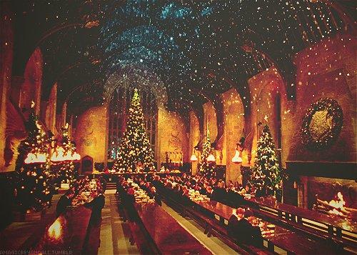 « Harry ne se souvenait pas d'avoir jamais vu Sirius d'aussi bonne humeur. Il allait même jusqu'à chanter des cantiques, apparemment ravi d'avoir de la compagnie pour les fêtes. »