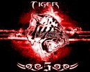 Photo de lil-tiger5
