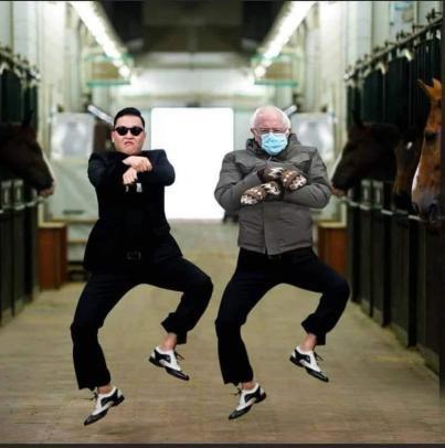 Bernie Gangnam Style
