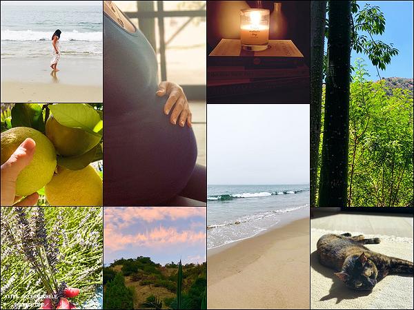•••  INSTA Lea a posté diverses photos sur ses réseaux sociaux depuis janvier 2020 voici la quatrième partie            J'adore les photos de bord de mer tout particulièrement, celle de son ventre ainsi que les livres dont celui de Teresa Palmer, Zen Mamas