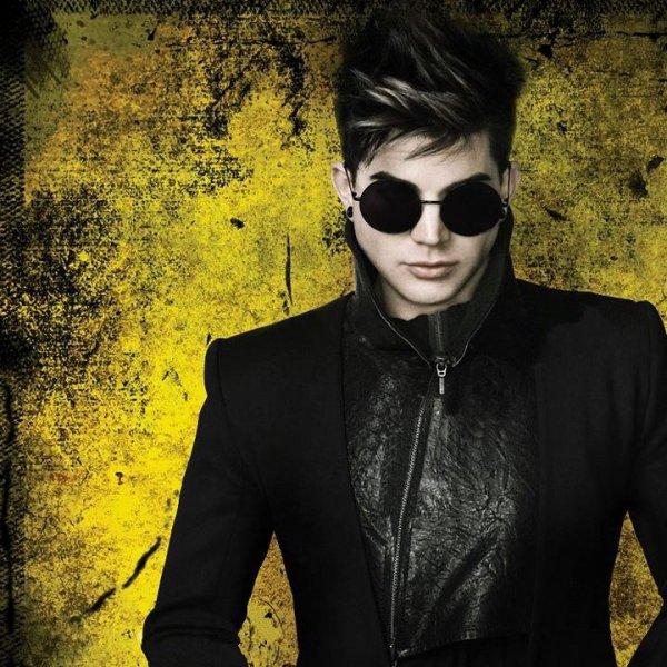 """Selon le magazine Rolling Stone, """"Trespassing"""" fait partie des meilleurs albums de l'année 2012"""
