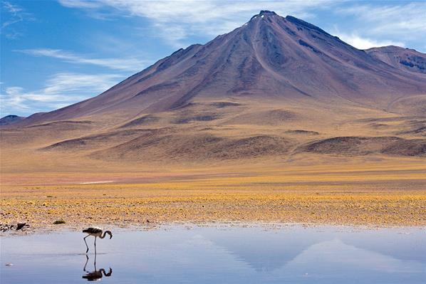 Quels sont les plus beaux déserts du monde
