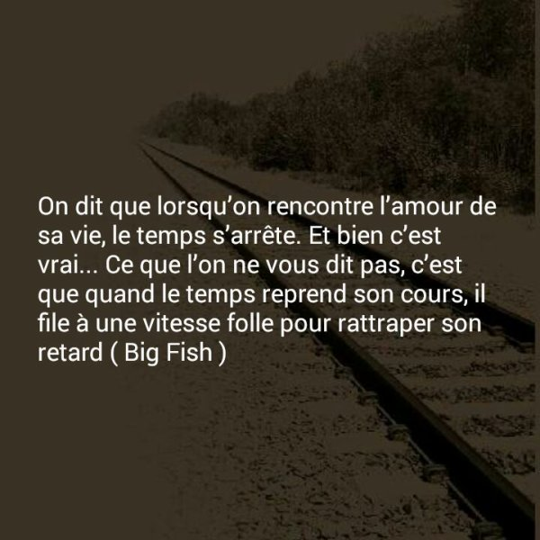 Citations Amour