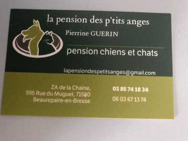 LA PENSION DES P'TTIS ANGES