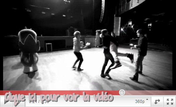 21 , 22 & 23 Avril 2011  : 3 vidéos on été mise en ligne 2 Pubs pour pokémon et une avec une questions qu'on leur a passer + un session question réponse de Harry