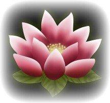 La fleur de Ren