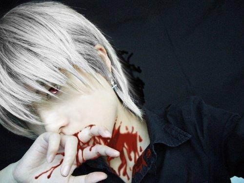 Cosplay (les meilleures) de Vampire knight