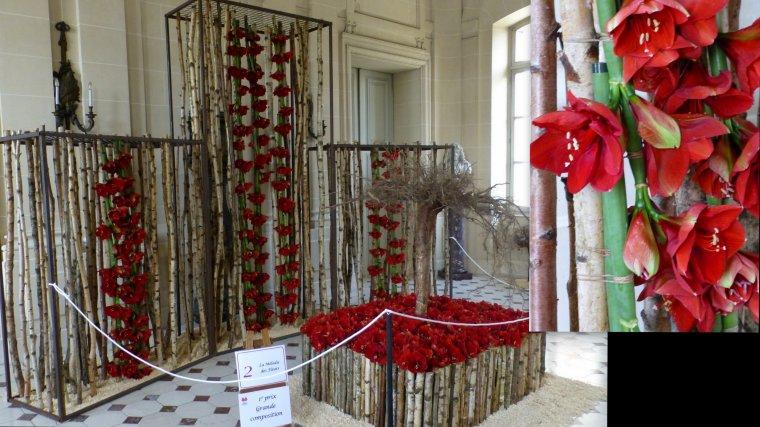 Beloeil amaryllis 2015 n 1 7 blog de creationmartine for Acheter amaryllis