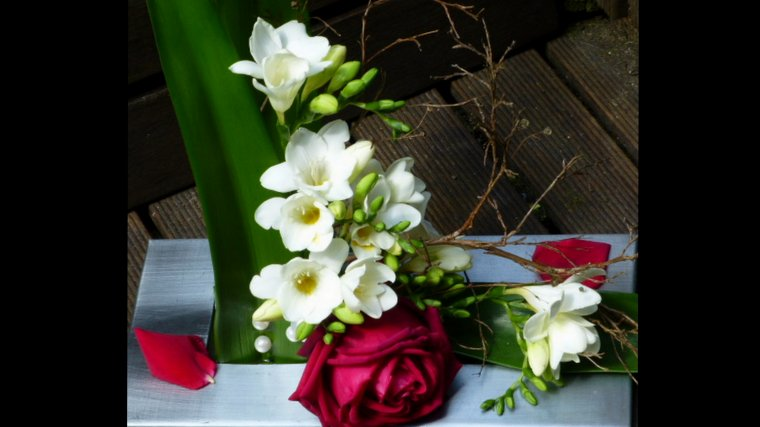 ROSE ET FREESIAS
