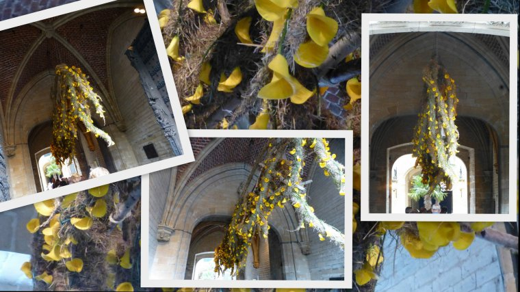 FLOWERTIME BRUXELLES 2