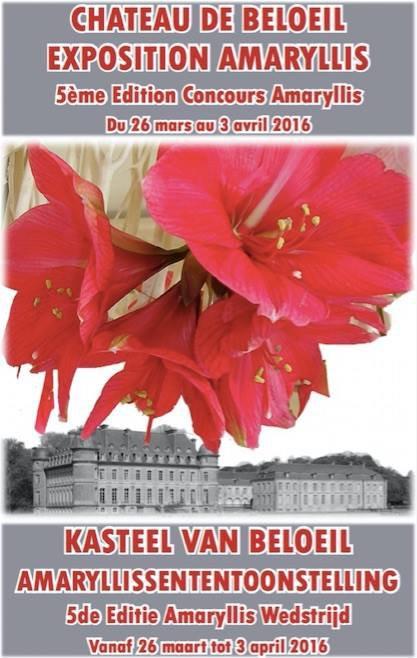 DEMAIN VISITE AU CHATEAU DE BELOEIL POUR 6000 AMARYLLIS