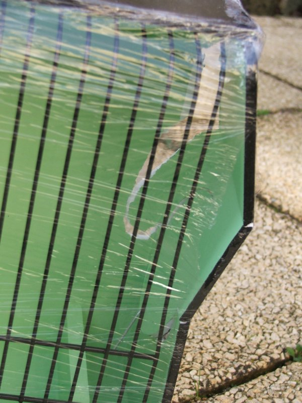 Cage concours avec fond vert