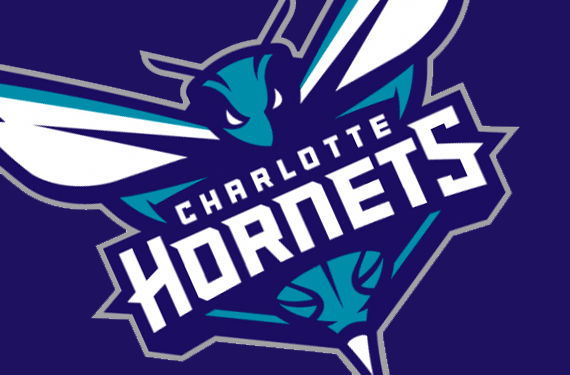 les frelons de Charlotte