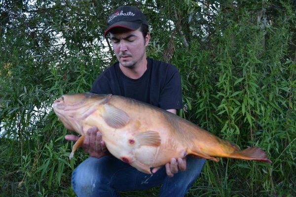Quelques poissons fait avec des produits en Test!!! LOIRBAITS
