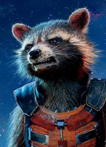 Rocket Raccoon/Rocket