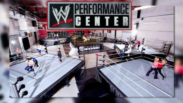 La WWE a la recherche de lutteurs plus jeunes