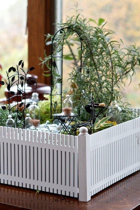 jardin (suite)