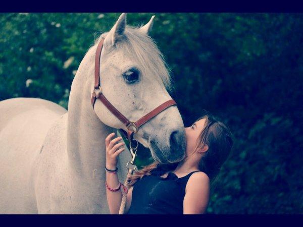 Etre à cheval, c'est comme être en ciel et terre, à une hauteur qui n'existe pas ღ