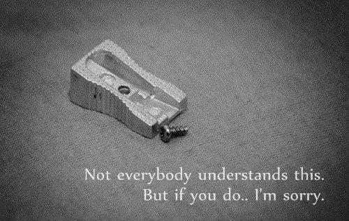 I'm sorry.