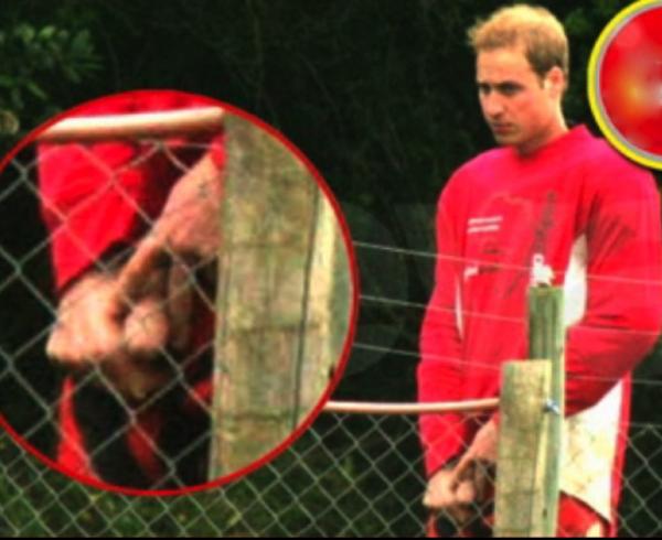 ( Photo) Old Scoop/ Prince William : Souvenez vous, avant les seins de Kate Middelton, il y'avait eu le sexe de William