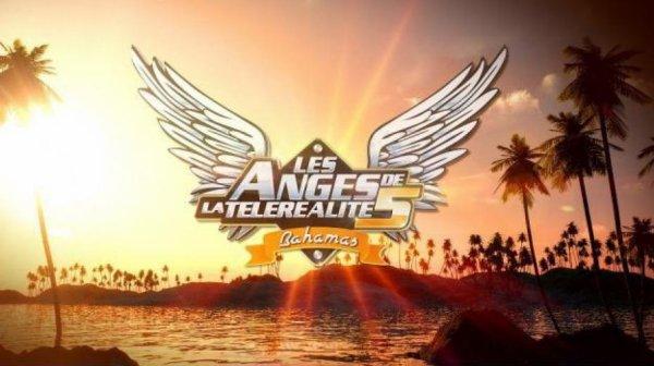 Les Anges de la télé réalité 5 : Découvrez le nom des comédiens qui vont aller s'étriper devant les caméras