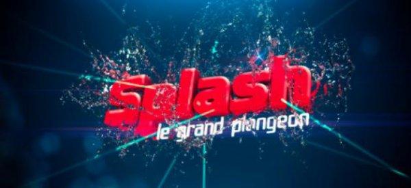 Splash, le grand plongeon : TF1 dévoile officiellement les noms des jurés