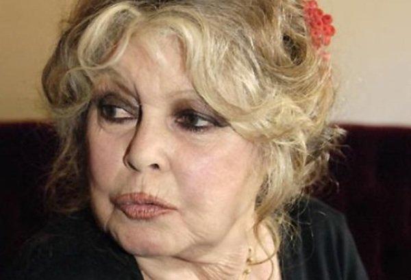 Brigitte Bardot: La star demande à Johnny Hallyday de dénoncer la corrida