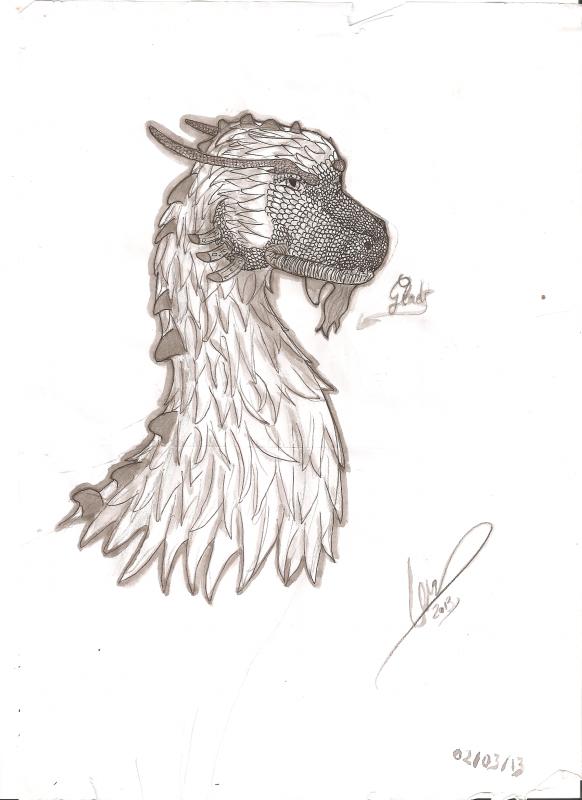 Eragon~~~~~~~~~~~Glaedr~~~~~~~~~~~Saphira~~~~~~~~~~~~~Dragons !