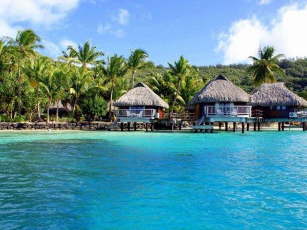 Cocosun Island RPG