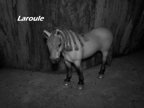 Laroule