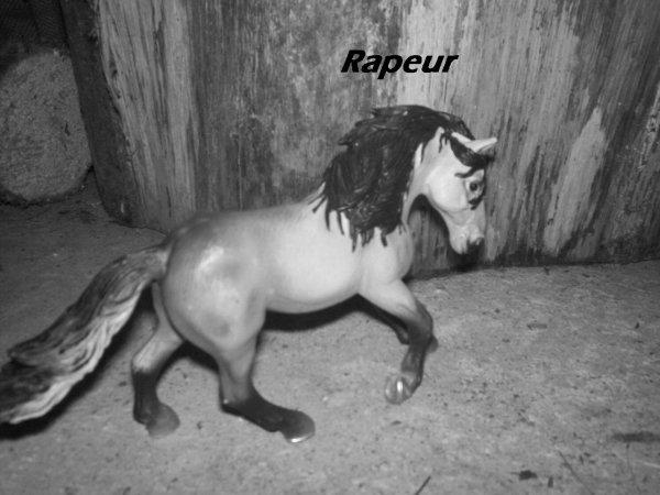 Rapeur