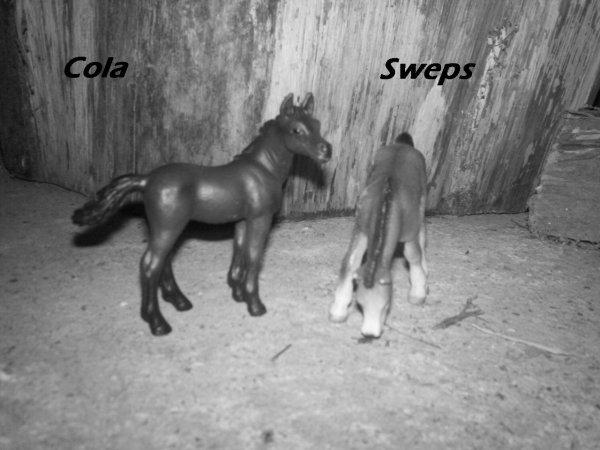 Cola & Sweps