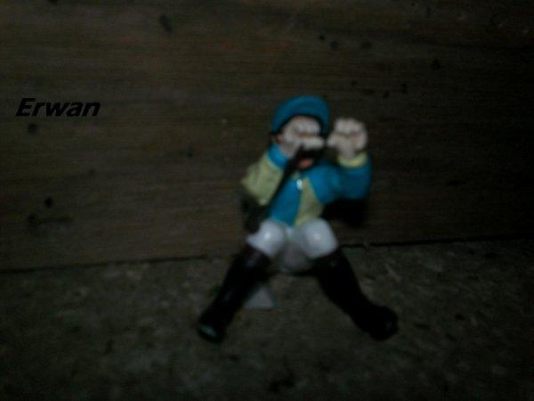 Erwan