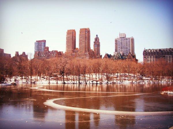 central park 2009 14:13
