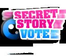 Photo de secretstory-vote