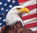 J'adore l'emblèmes des USA