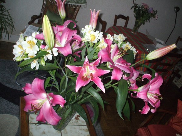 Voici  tous les bouquets de fleurs que j'ai dans mon ordinateur