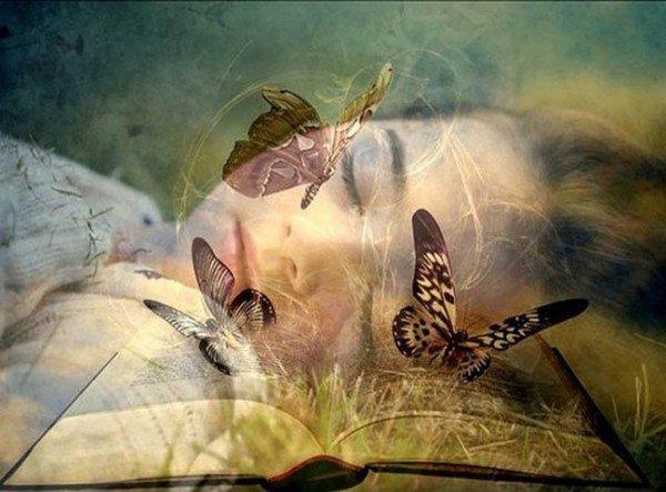 """"""" Comme un papillon """"..."""