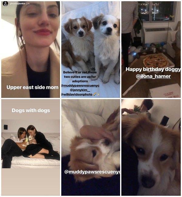 Du 6 au 18 Janvier 2019, Phoebe a posté sur son Instagram