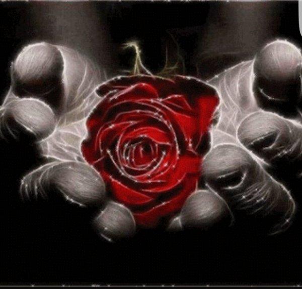 JE VOUS OFFRE CETTE ROSE DE L' AMITIÉ À VOUS MES AMIES ET VOUS VOUS SOUHAITE UN EXCELLENT WEEK-END ⚘?⚘