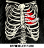 OfficielCmPunk