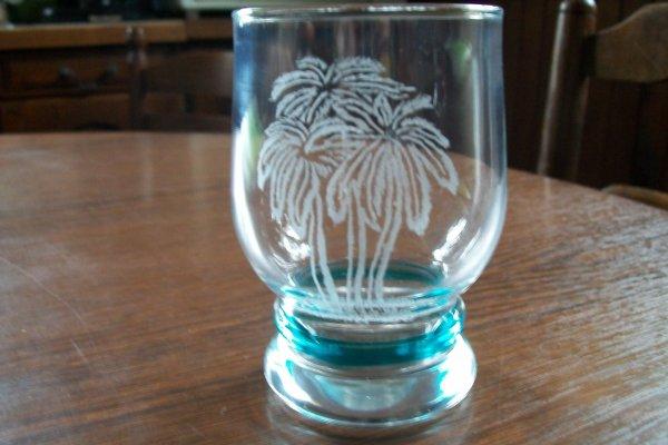 verre palmiers