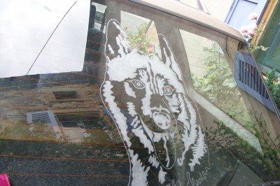 tête de loup gravée sur la vitre arrière de la voiture