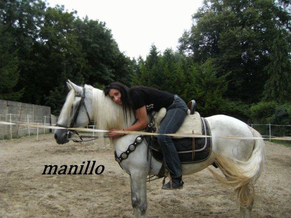 mon nouveau cheval espagnol hongre vient d avoir 5 ans