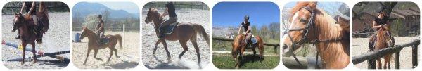 Mon bébé, mon poney, la meilleure chose qui ai pû m'arriver ♥