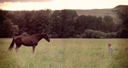 L'Homme qui murmurait à l'oreille des chevaux <3